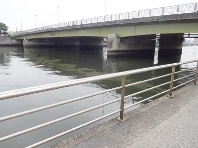 横浜鶴見川ハゼ釣りポイント