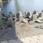 多摩川大橋でテナガエビ釣りのポイントと仕掛けと駐車場トイレ