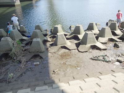 多摩川大橋テナガエビポイント
