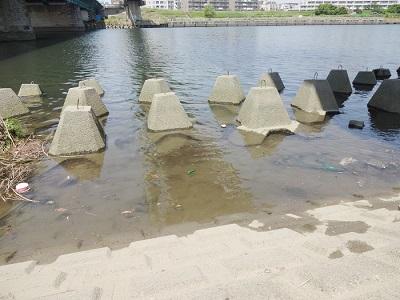 多摩川釣りテトラポイント