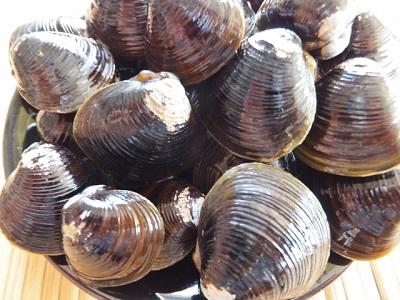 羽田沖の蜆の漁業権と放射能問題