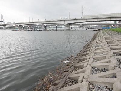 多摩川大師橋ハゼ釣りポイント