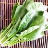ほうれん草の冷凍は生のまま?栄養や解凍方法や調理方法は?