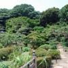 横浜三渓園へのアクセスと最寄り駅のバス時刻表と観光地のバス停
