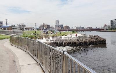 横浜鶴見川貝殻磯で水遊び