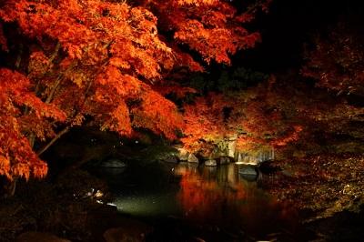 椿山荘庭園のライトアップ