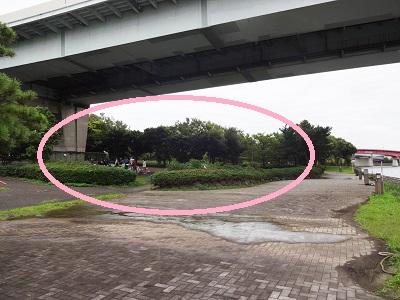 東海ふ頭公園の穴場バーベキュー場