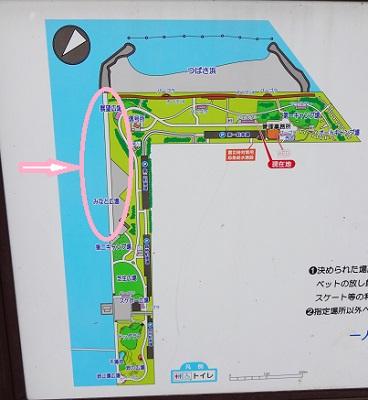 城南島海浜公園の釣り場案内図