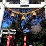 埼玉県川口市の前川神社に初詣に行った感想!アクセス方法や駐車場